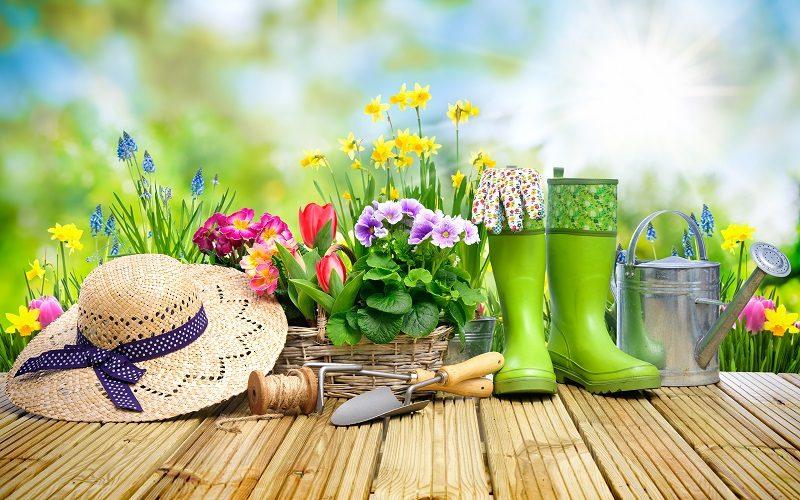 Jardins Et Maisons Fleuris 1000