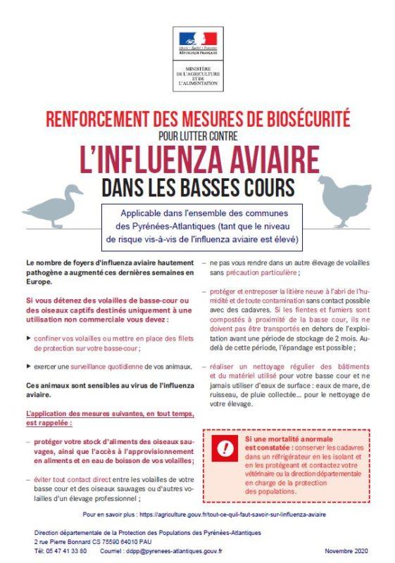 Influenza 18.11.20
